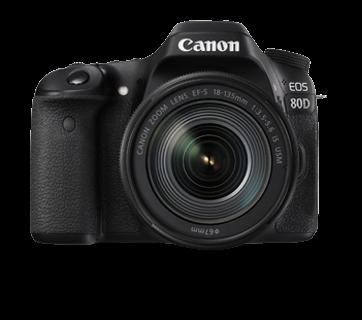 Canon 80D Combo