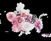 logo cnb.png