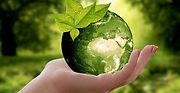 nature-sustainability