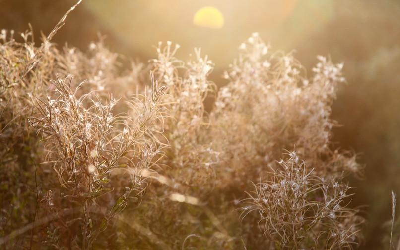 26. Autumn Sunset
