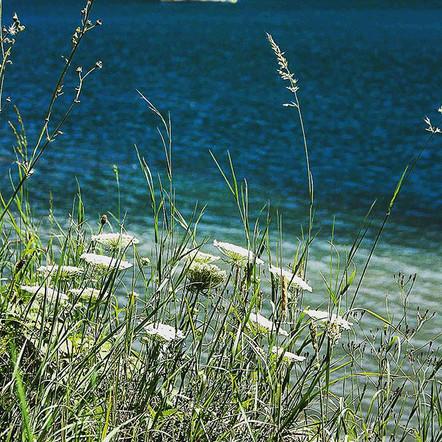 French Oisan Alps - Lac du Vermey