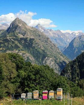 French Alps Oisans