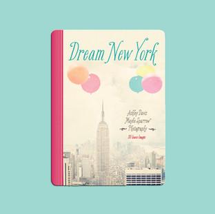 Dream New York book