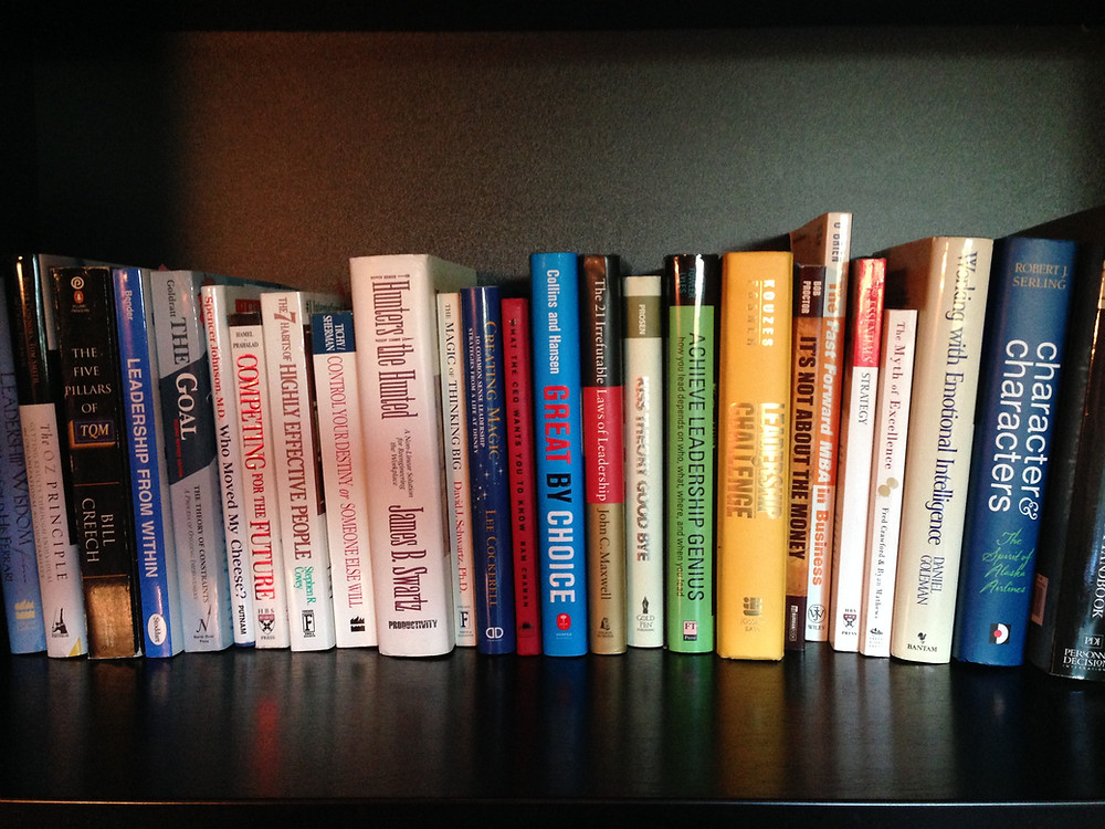 Leadership Books, Montreal Consulting
