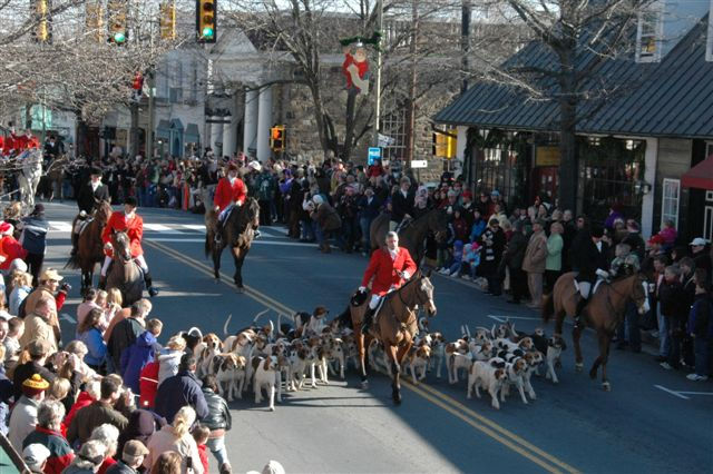 Horses and hounds.jpg