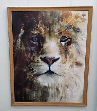 Stunning Lion Print - Framed