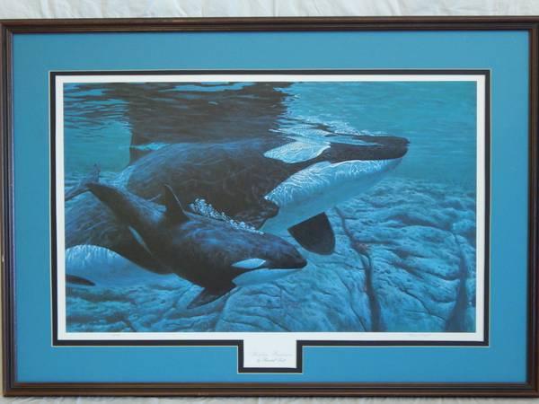 Orca Artwork