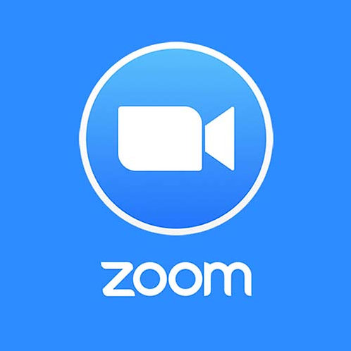 Zoom Meeting Annual Plan - Pro