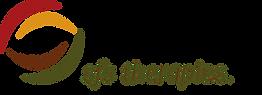 sfs logo Final edits 10-28-2016.png