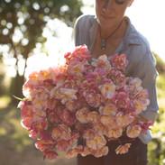 California Poppy - Thai  Silk  Appleblossom Chiffon