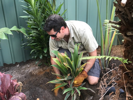Getting your landscape ready for warmer weather
