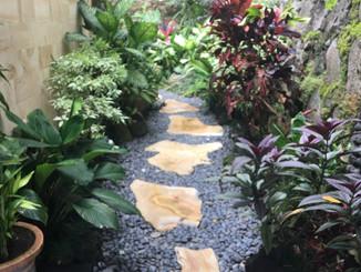 The Garden Gnome Port Stephens - gardens