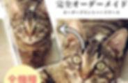 order-01h-01.jpg