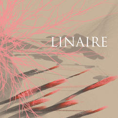 Linaire / Linaire (2020)