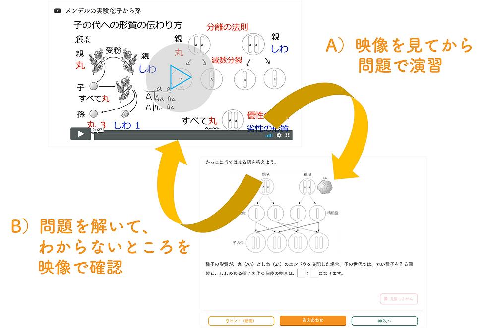 eboard_学習の流れ2パターン.png