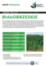 BIALOBRZESKIE JPEG.jpg