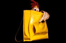 Alfonso en el bolso