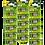Thumbnail: Kit Pilha 23A com 3 cartelas