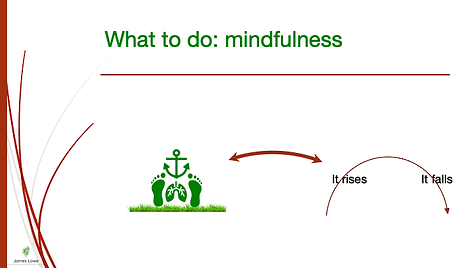 Grounding and Mindfulness.png