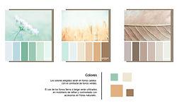 1-25-paleta-de-colores-annanke.jpg