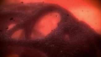 Scientific Animation Reel