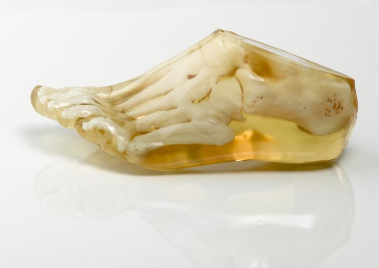 MedicalApplication-Foot.jpg