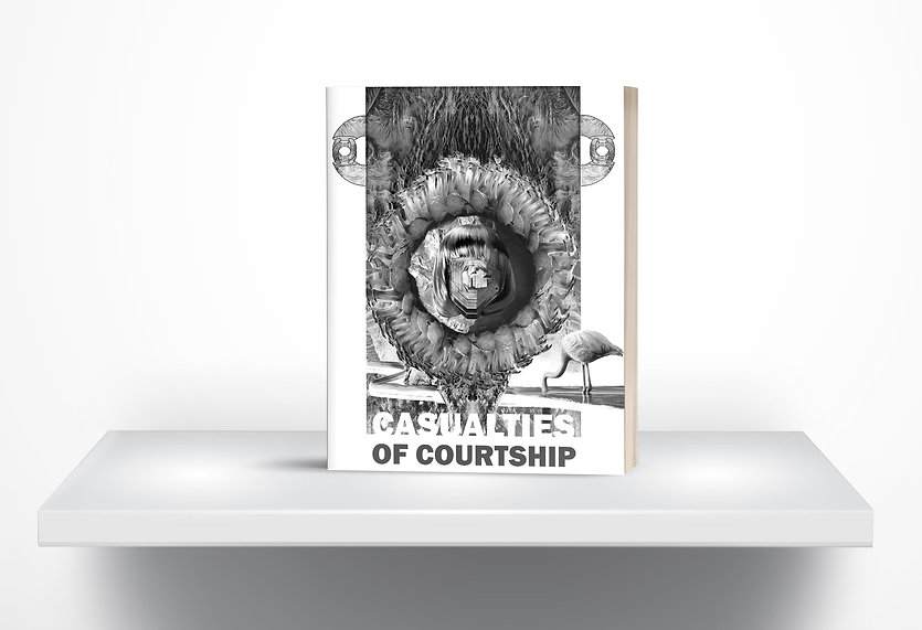 CASUALTIES OF COURTSHIP COVER.jpg