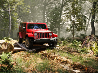 Jeep Rubicon Forest