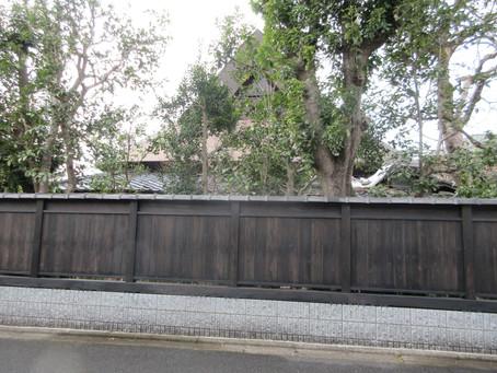 Hey(塀)が好きです。④