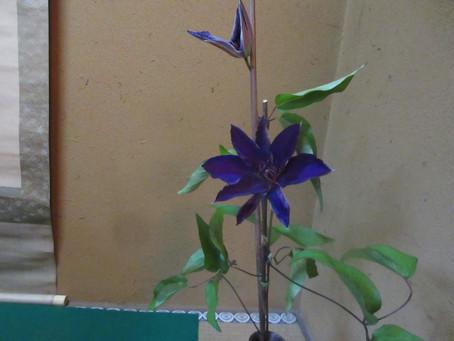 鉄仙のこの花の紫の色は高貴です。