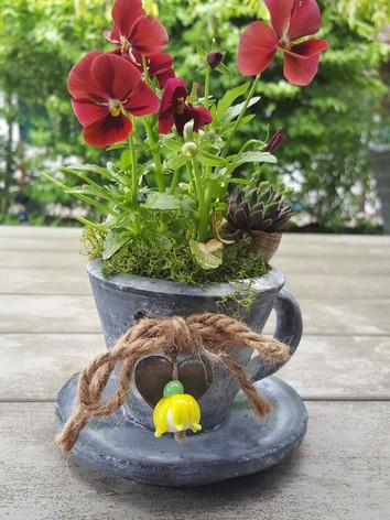 Garten Kreationen - je nach Saison und auf Anfrage