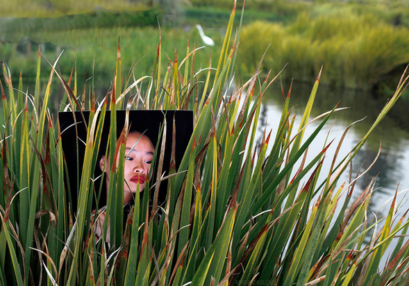 Nestled in the Reeds