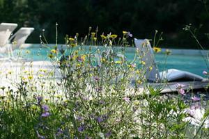 piscine-segries.jpg