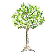Patenbaum inkl. Jahrespflege