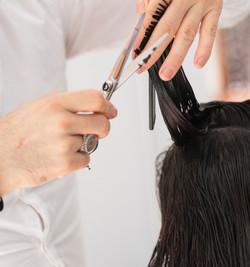 Hairdresser and Beauty Salon