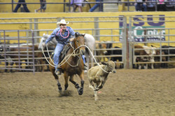 rodeo roping