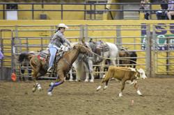 rodeo ropingg
