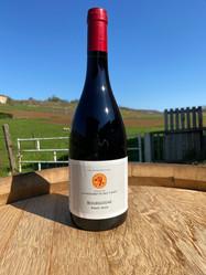 Bourgogne Pinot Noir - Rouge