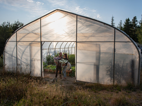 New Beginnings @ Vertgen Farms/Island Flower Farm