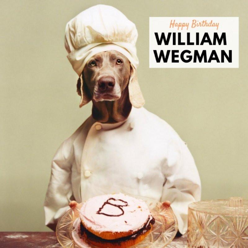 Magnificent Birthday Artist William Wegman Funny Birthday Cards Online Elaedamsfinfo