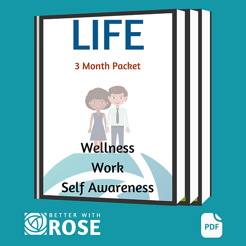 Wellness, Work and Self Awareness 3 Month PDF Packet