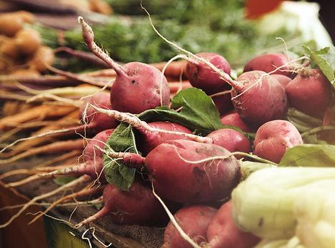 radishes-and-carrots_glowy_resized.jpg