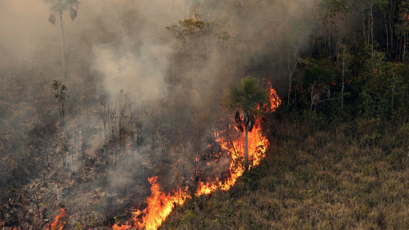 Combate incêndio florestal no Parque Indígena do Xingu, no Mato Grosso.  Foto: Vinícius Mendonça Ibam
