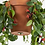 Thumbnail: Bolty Hanging System For Pots