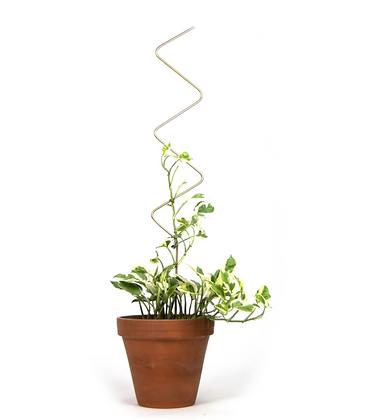 Plant Stake Zig Zag Gold