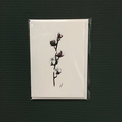 Card+Envelop 'Cotton'