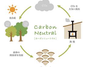 薪ストーブと自然環境