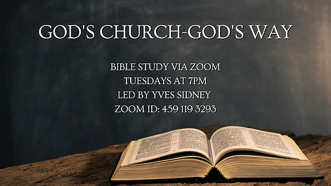Zoom Bible Study (2).png