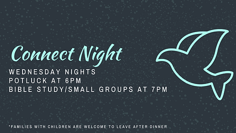 Connect Night (1).png