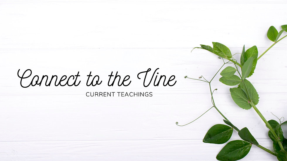 Connect to the Vine.jpg